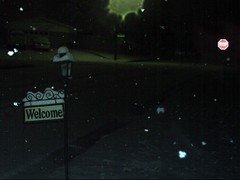Snow covered signs