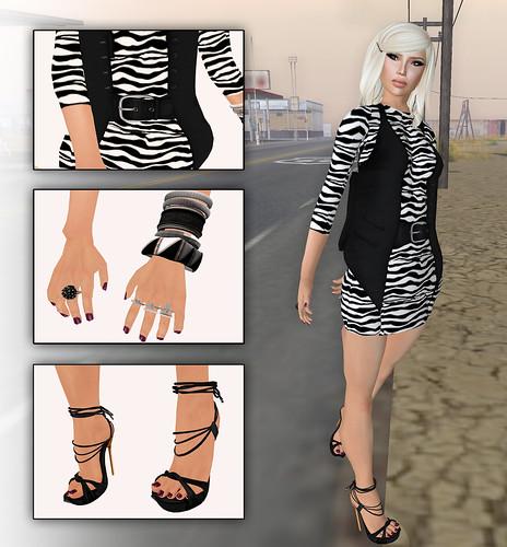 zebra in western look6
