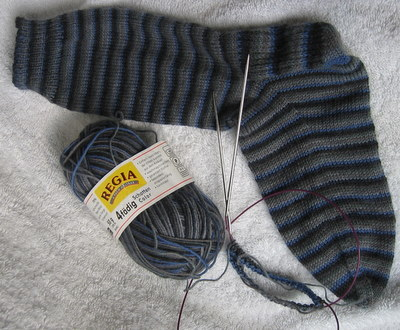 Regia sock in progress