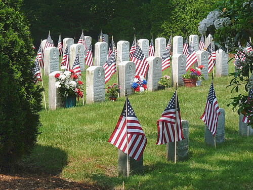 Flags for the fallen