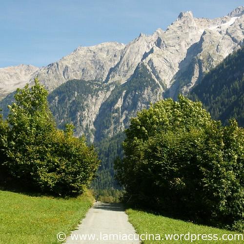 Val Bregaglia 10_2010 09 04_9413
