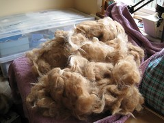 hand washed fleece.