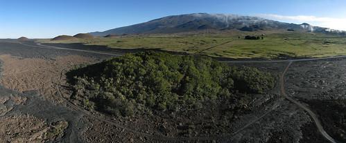 Kipuka Puu Huluhulu and Mauna Loa