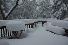 Marshmallow Deck