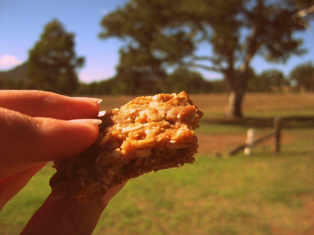 mmm anzac biscuits