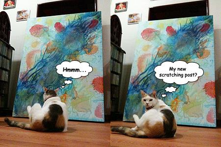 cat critic
