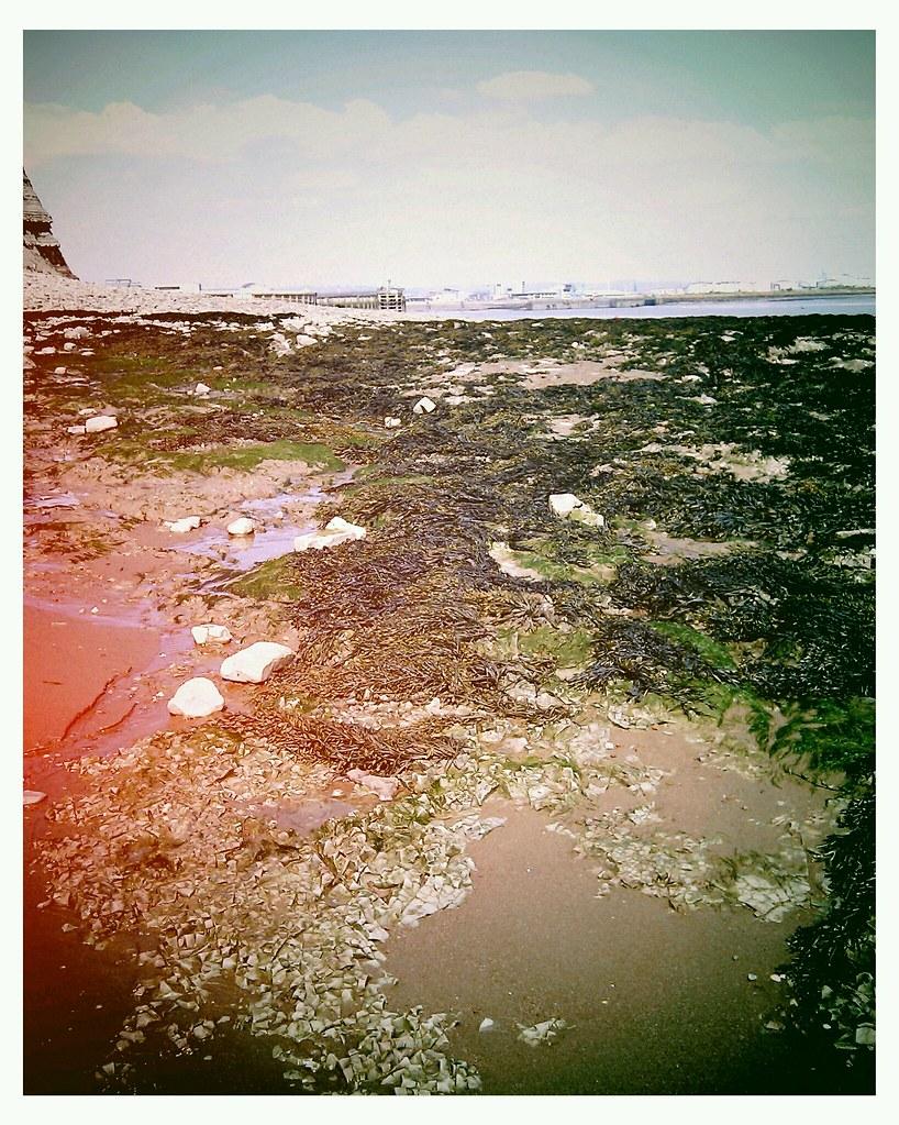 HTCDesire-Cardiff Bay mudflats