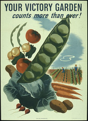 Your Victory Garden Counts More Than Ever! 194...