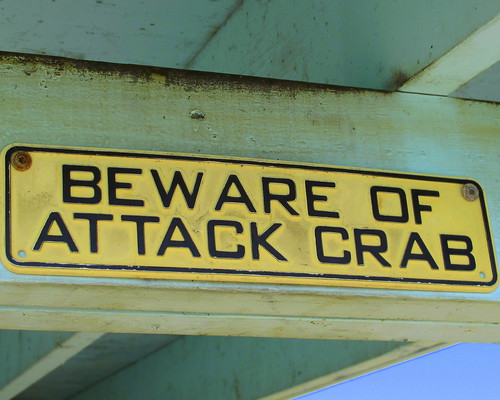 attack crab