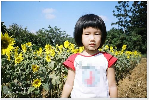 2009_12_T3_55_18.jpg