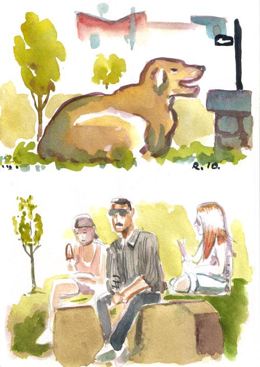 park-dog-etc