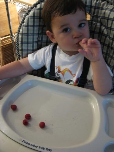 yum berries