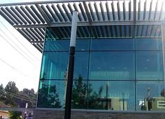 Silver Lake library 001