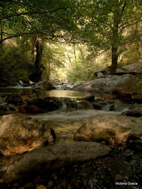 En el mismo río entramos y no entramos, pues somos y no somos [los mismos]