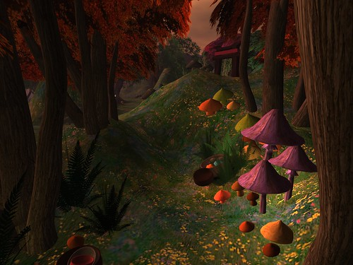 Curiosity: Mushroom Grove