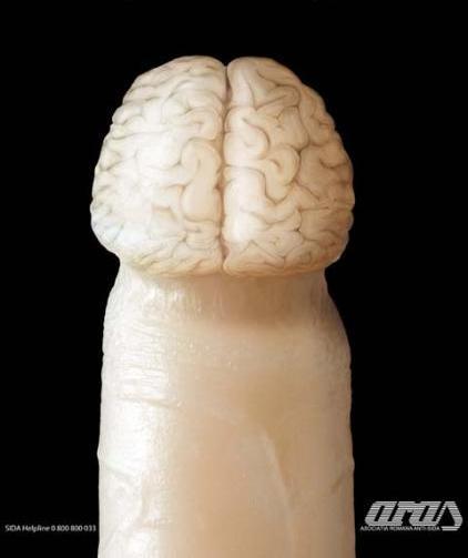 cerebro hombre