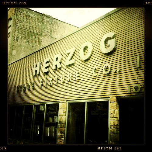 The other Herzog