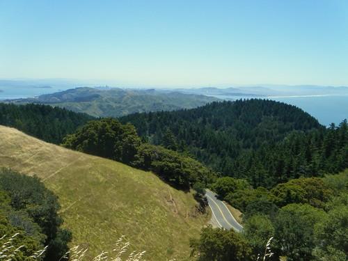 Mt Tam view