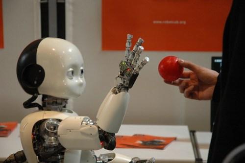 iCub le robot