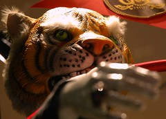Year of the Tiger, Tiger mask, display with ci...