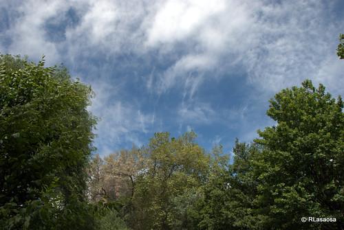 Árboles y nubes vistos desde la Vuelta del Castillo.