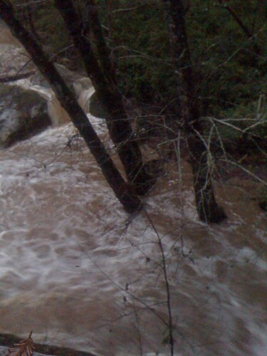 Boulder Creek 7:45am Tuesday 1/19