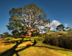 Bilbo's Hobbit Hole and the Party Tree in the ...