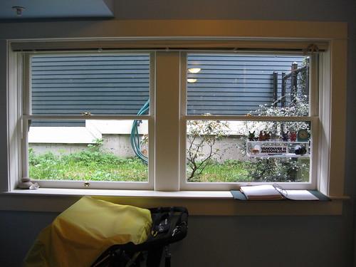 South Window