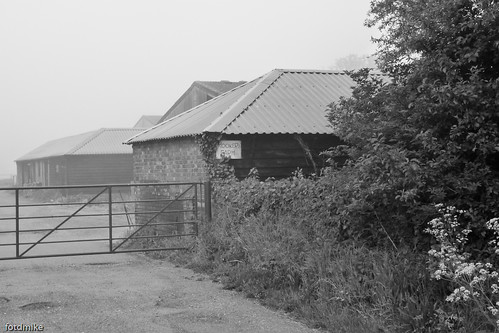Rookery Farm in the mist P1040158