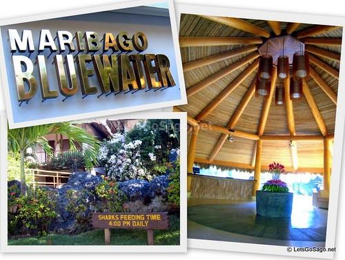 Bluewater Beach Resort
