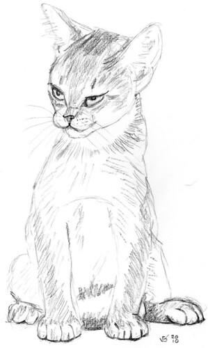Cute kitten, drawn live on April 7, 2010