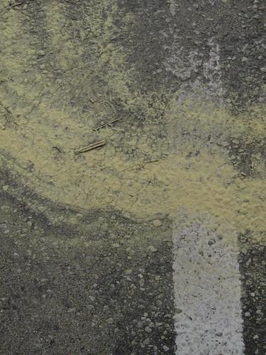pollen 03