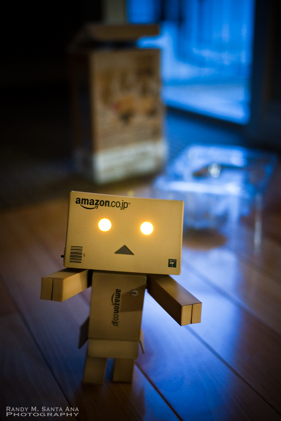 Welcome Home, Danbo!