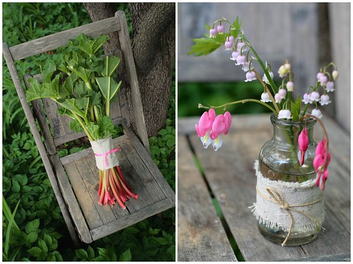 Rhubarb and Dicentra Diptych