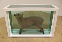 "Damien Hirst's ""Away From The Flock""."
