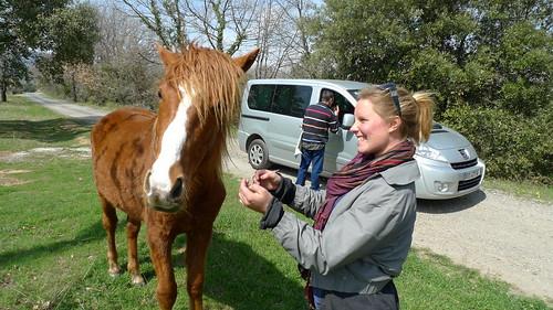 Amanda and horse