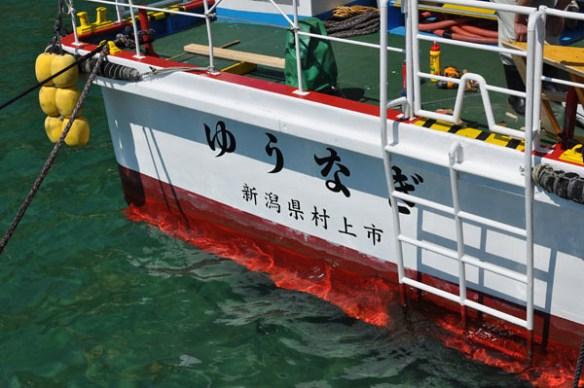 """Pleasure boat """"Yu-nagi"""""""