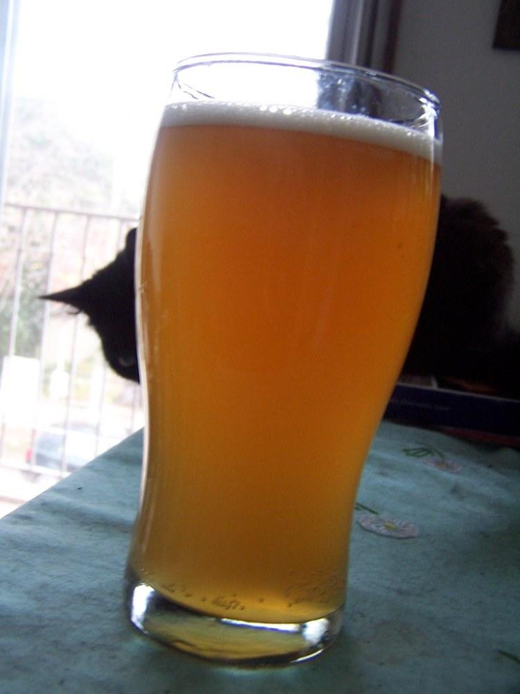 Mi Cerveza con Miel - Parte II (2/2)
