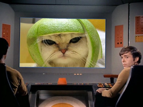 Star Trek TOS viewscreen 7