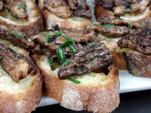 creamed morels on toast