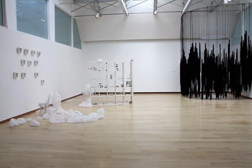 2010 Senior Thesis Exhibition