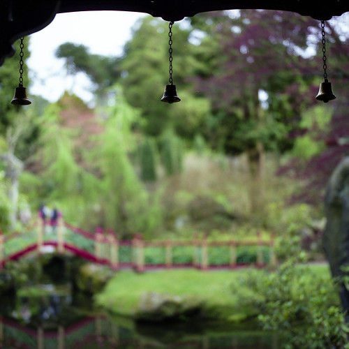 Chinese garden by ronet
