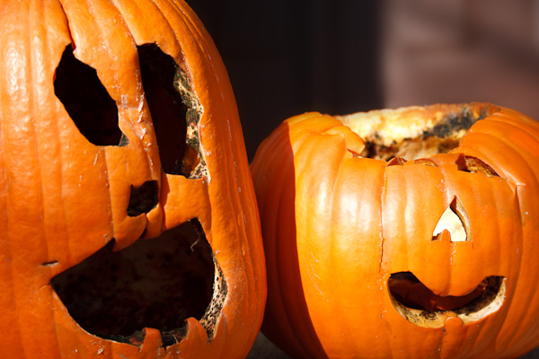 The demise of our Halloween jack-o-lanterns