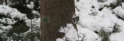Bergpfad- und Kletterzugangsmarkierung