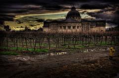 Pseudo Notre Dame