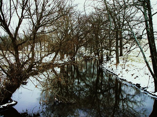 snowy river 2.18.2010