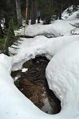 First Lake snowshoe, 24 Jan 2010