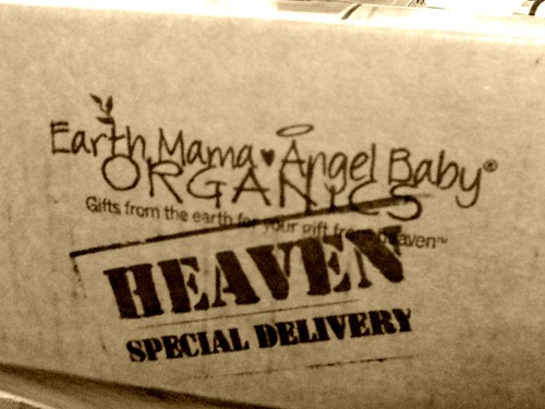 Earth Mama Angel Baby box