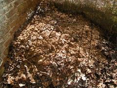 Kompost schichten 2