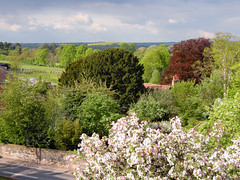View over Streatley